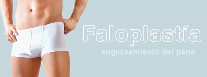Faloplastía (alargamiento del pene)